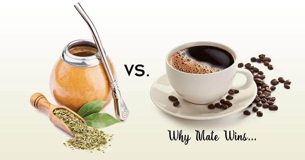 Yerba Maté versus Coffee